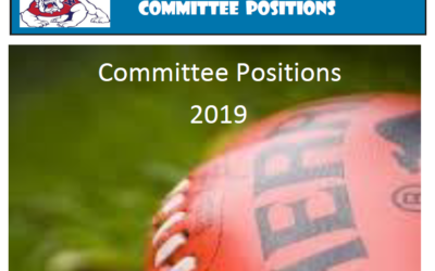 Committee Positions for 2019